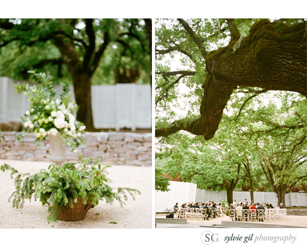 sylvie-gil-film-photography-wedding-outdoor-durham-ranch-details-ceremony-flower-tree