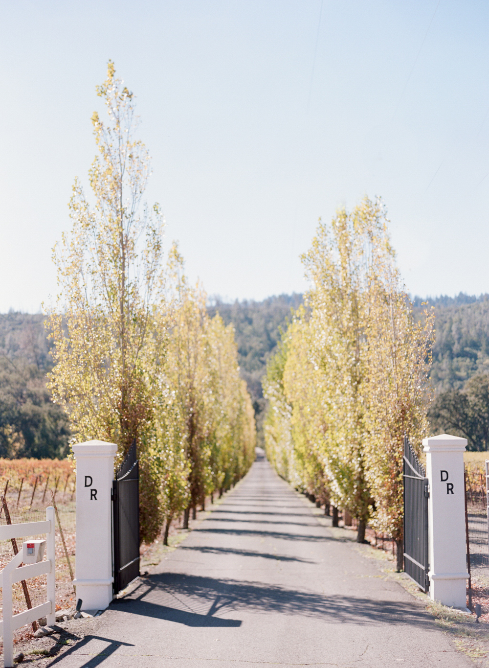 Entrance to Durham Ranch in Napa Valley, California; Sylvie Gil Photography