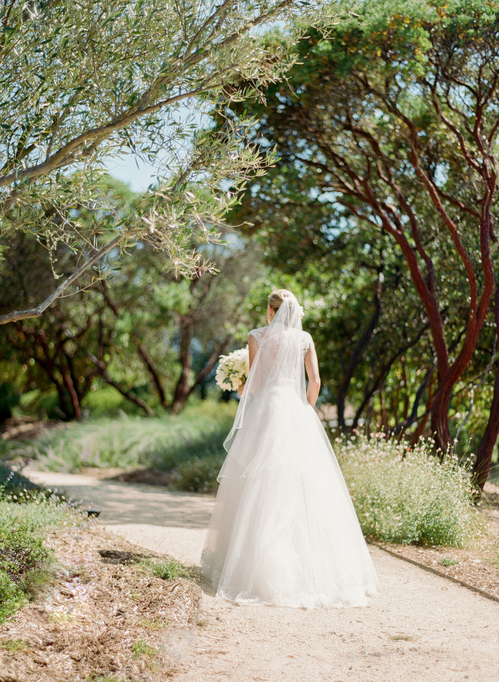 Caroline walks through an olive grove in her Monique Lhuillier lace gown toward her groom for a first look; photo by Sylvie Gil