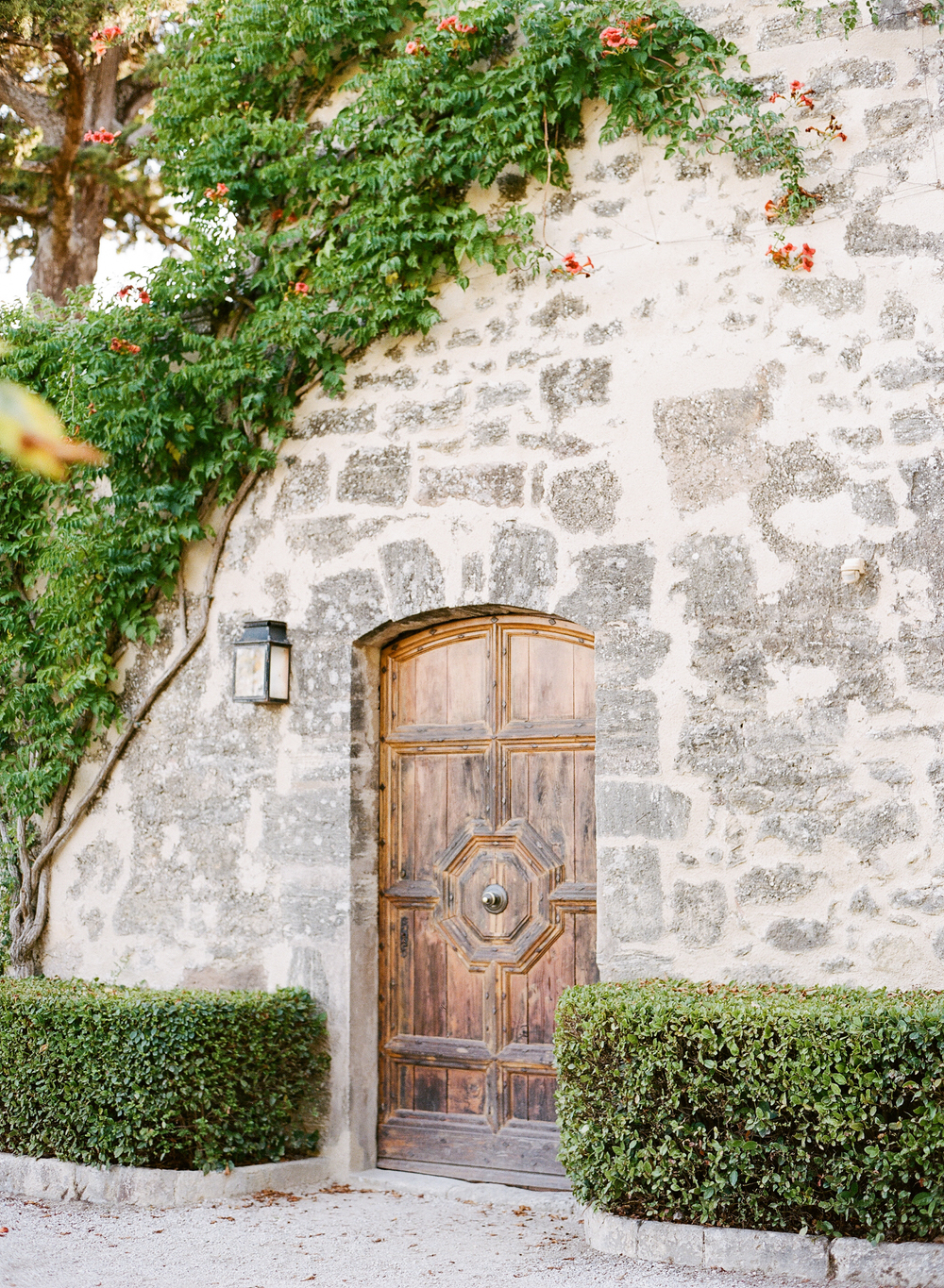 A rustic wooden door set into a vine-covered village wall in Provence; photo by Sylvie Gil