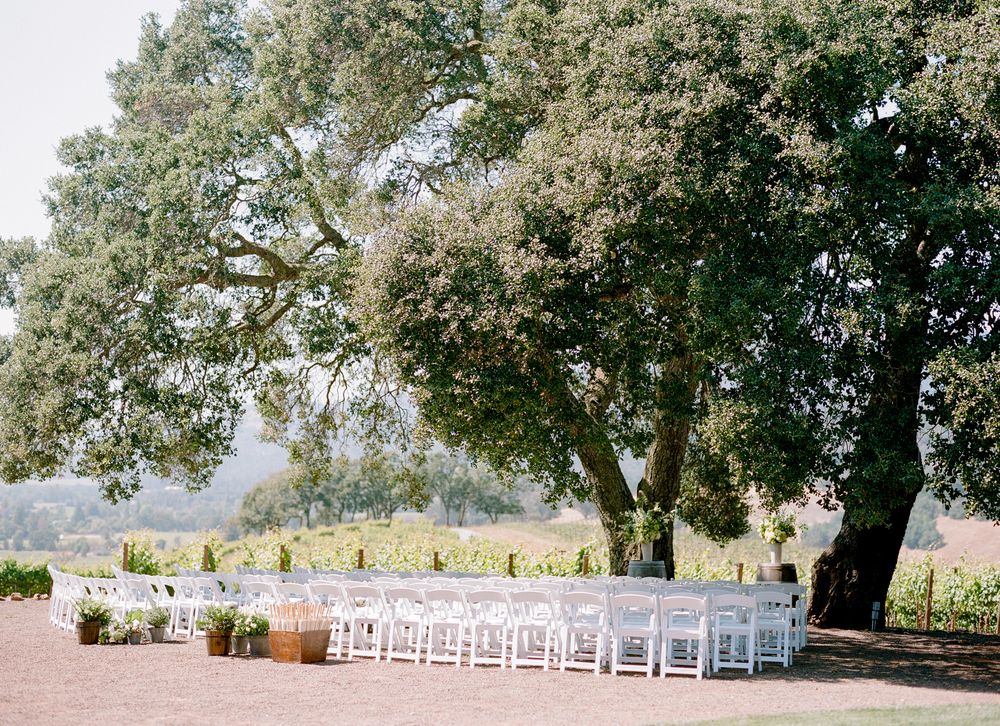 The ceremony space, lined with white chairs in front of two enormous oaks in California wine country; photo by Sylvie Gil