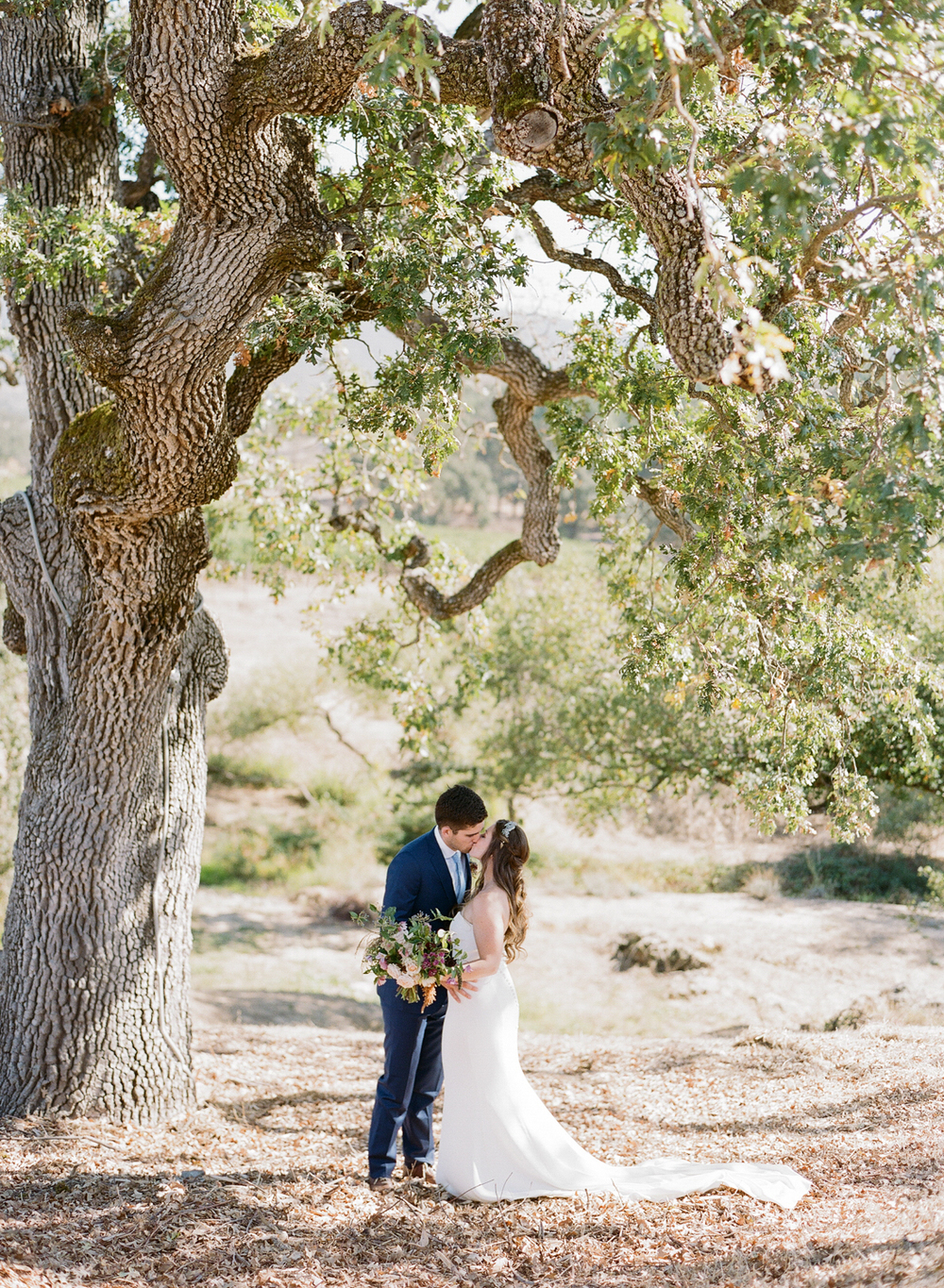 Tali and Sam kiss under a gorgeous oak in Napa before their wedding ceremony; photo by Sylvie Gil
