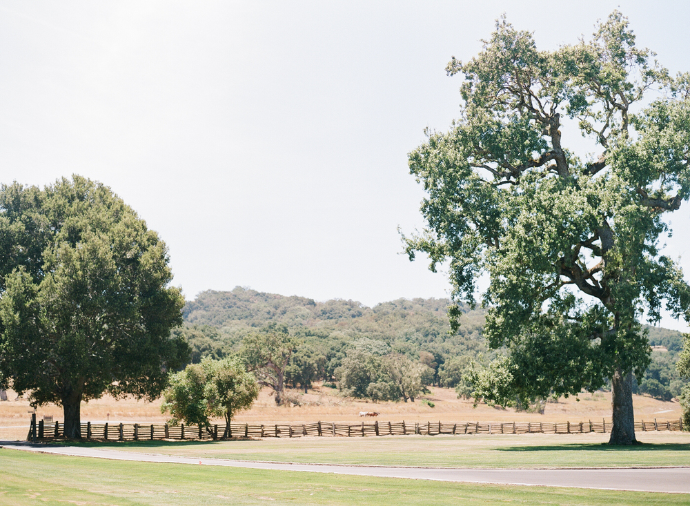 Santa Lucia preserve landscape, a beautiful ranch setting for a wedding; photo by Sylvie Gil