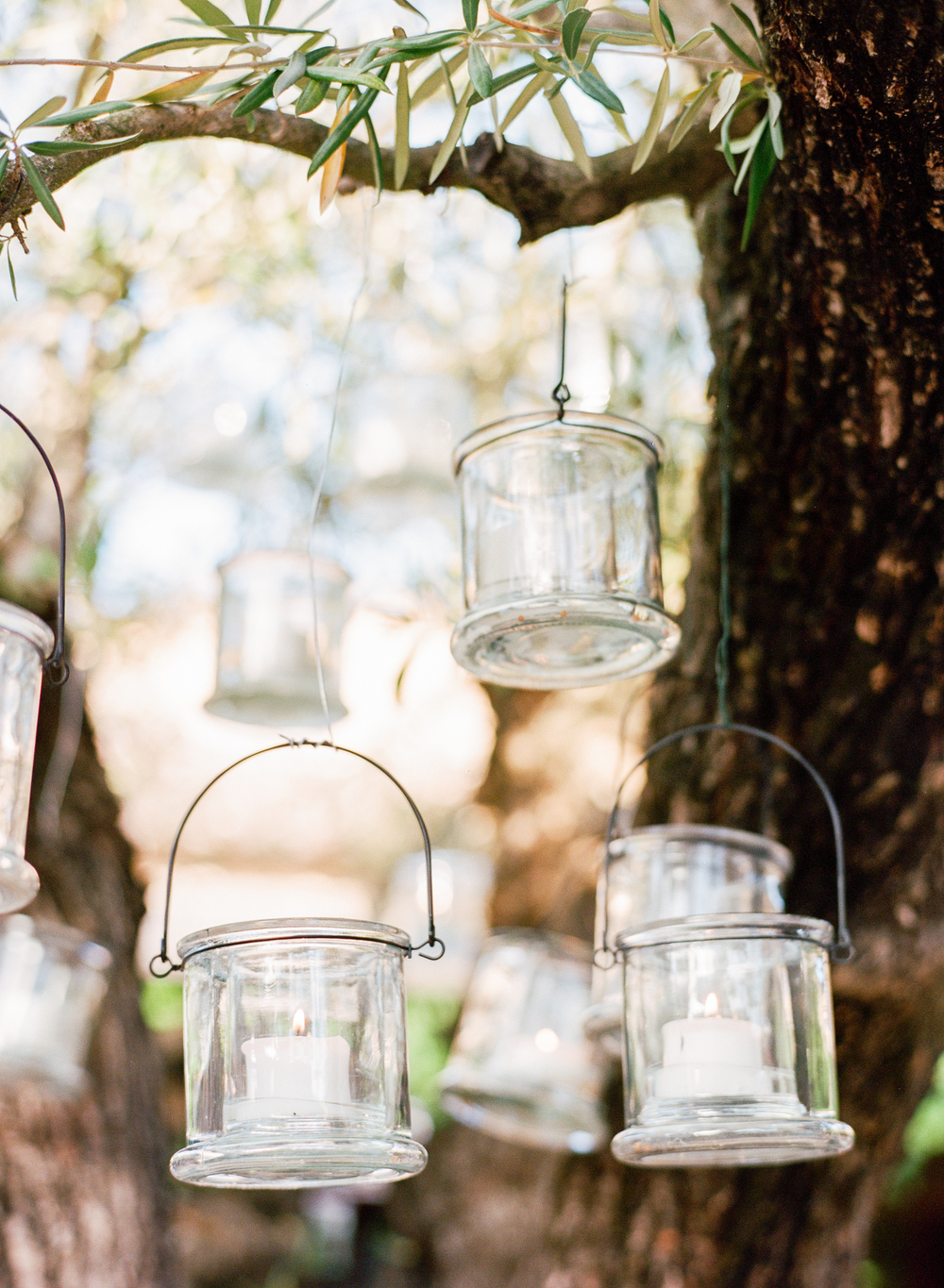 Tea light votives hung from an olive tree for the outdoor reception; Sylvie Gil Photography