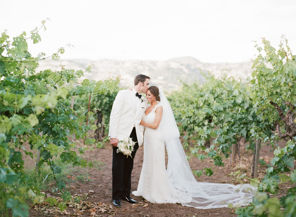 Groom kisses bride's forehead in vineyards of Yountville, CA after wedding at Vintage Estates; Sylvie Gil Photography