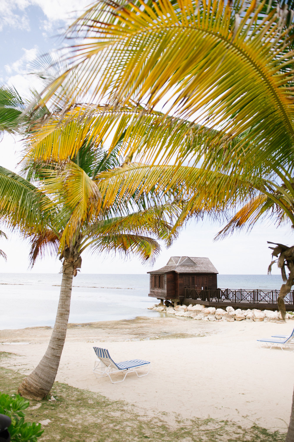 Idyllic beach cabana with palm trees in Montego Bay, Jamaica