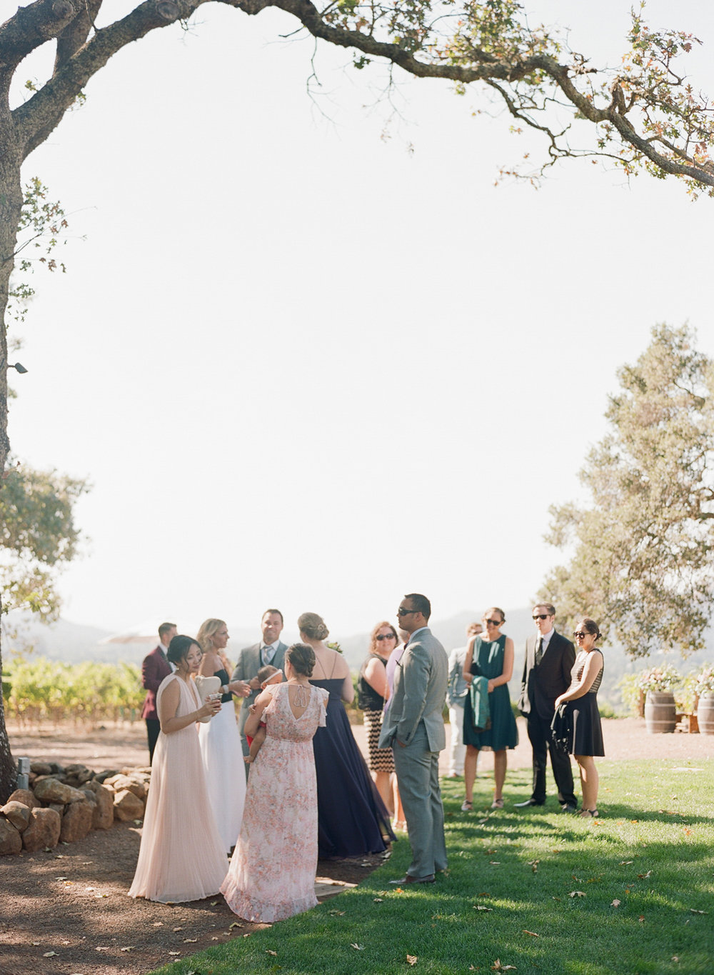 Guests mill around before the ceremony in Kunde Family Winery; Sylvie Gil Photography