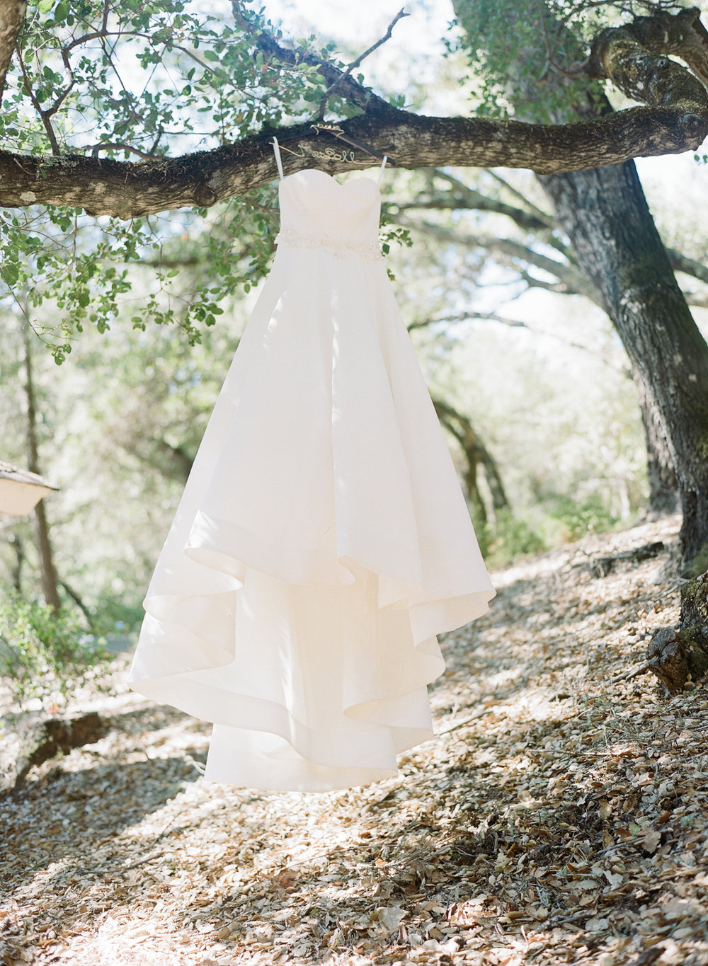 Bride's wedding gown hangs from an oak tree before the ceremony in Napa; Sylvie Gil Photography