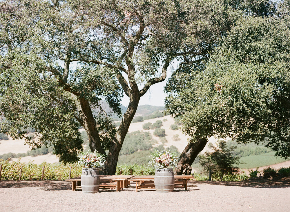 A wedding ceremony at Kunde Winery in Napa Valley under two oak trees; Sylvie Gil Photography