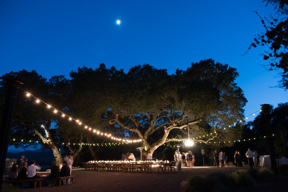 String lights over the wedding reception at Kunde Winery as night falls; Sylvie Gil Photography