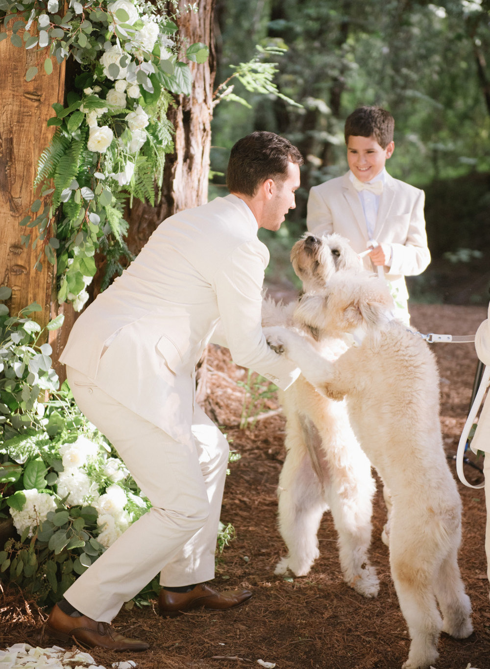 The groom plays with two labradoodles before the ceremony; Sylvie Gil Photography