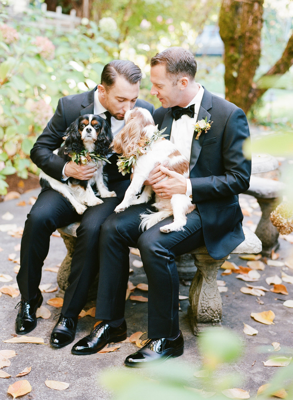 Grooms pet their King Charles Spaniels after their wedding ceremony in St. Helena; Sylvie Gil Photography
