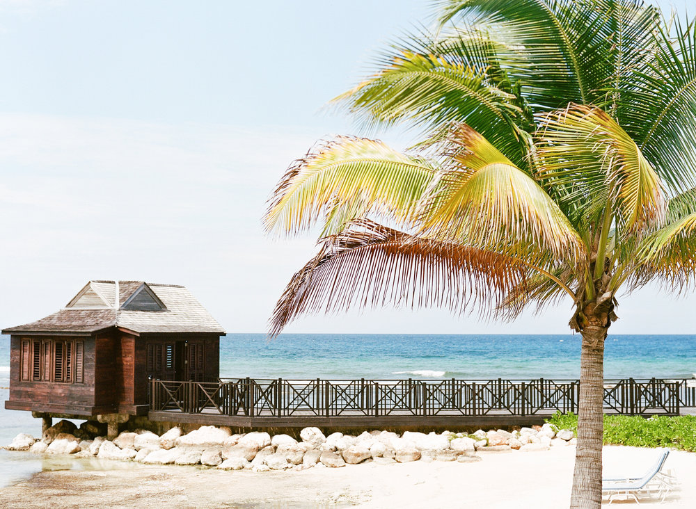 Palm trees and a beach cabana in Montego Bay, Jamaica; Sylvie Gil Photography