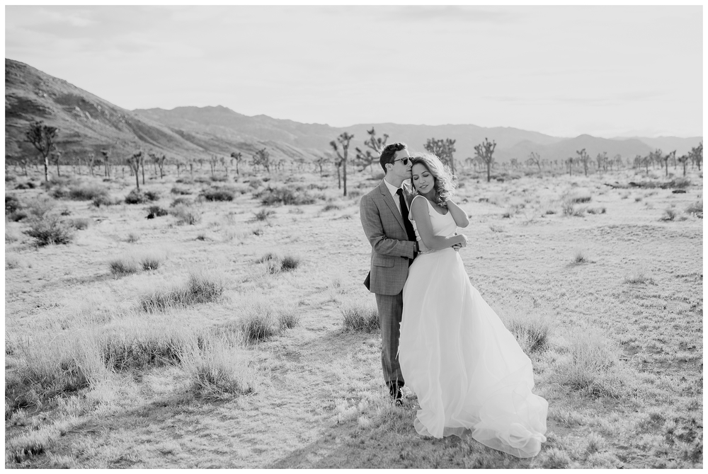 Rebecca_Bridges_Photography_Indianapolis_Wedding_Photographer_4106.jpg