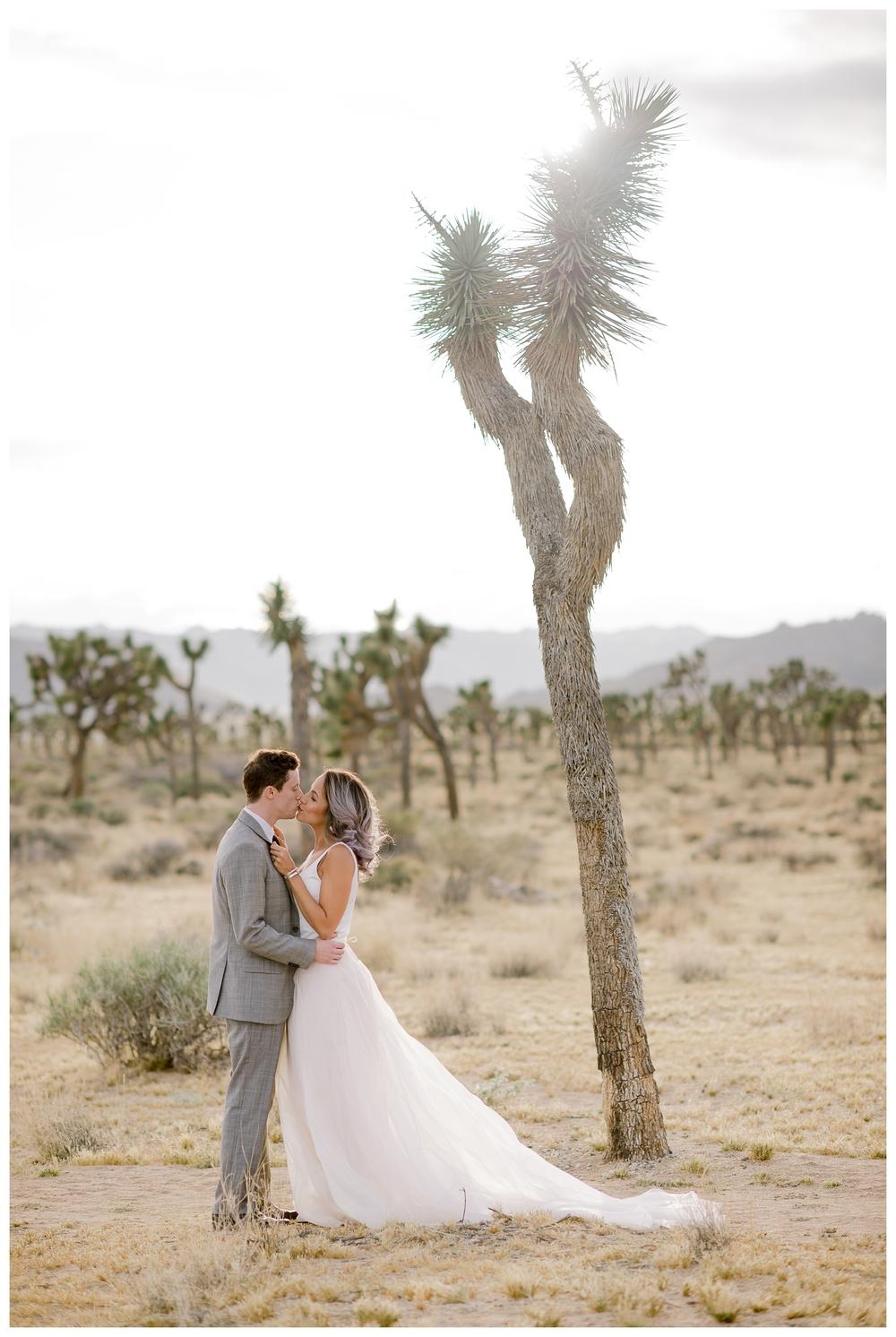 Rebecca_Bridges_Photography_Indianapolis_Wedding_Photographer_4111.jpg