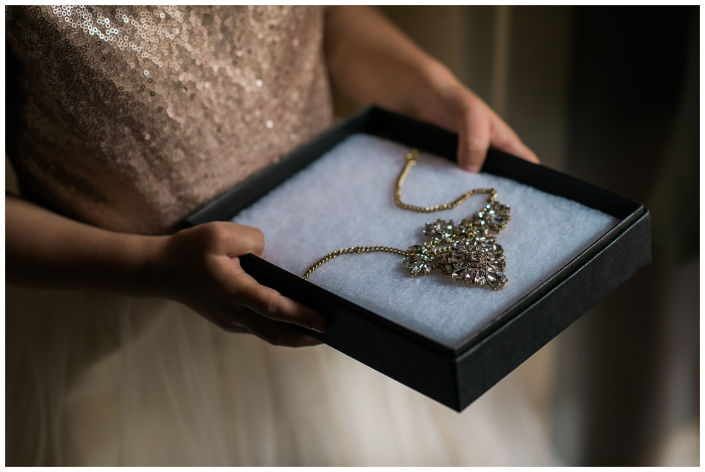 Rebecca_Bridges_Photography_Indianapolis_Wedding_Photographer_4374.jpg
