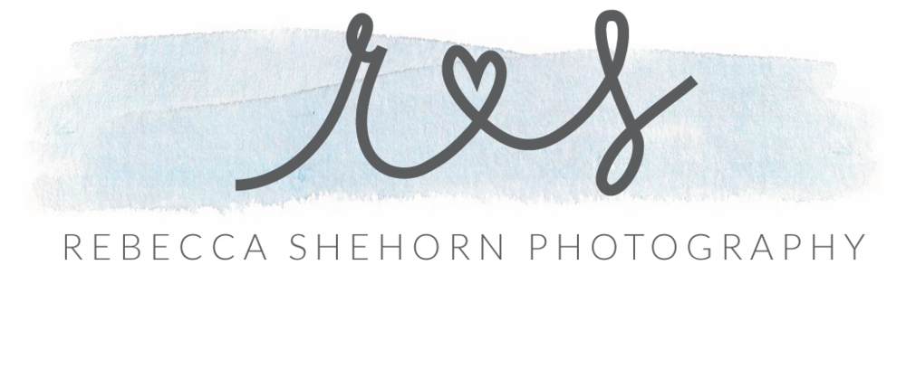 Rebecca Shehorn Photography Indianapolis Wedding Photographer