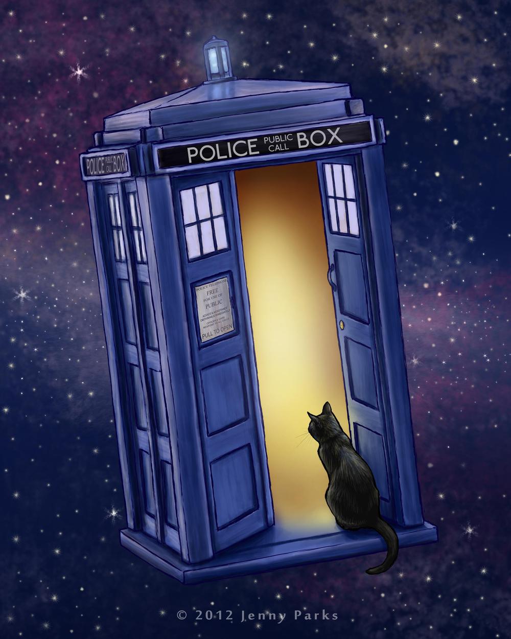The Tardis Cat