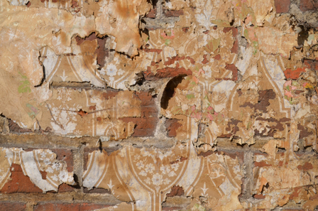 Coleman Architects: Wallpaper found in demolition