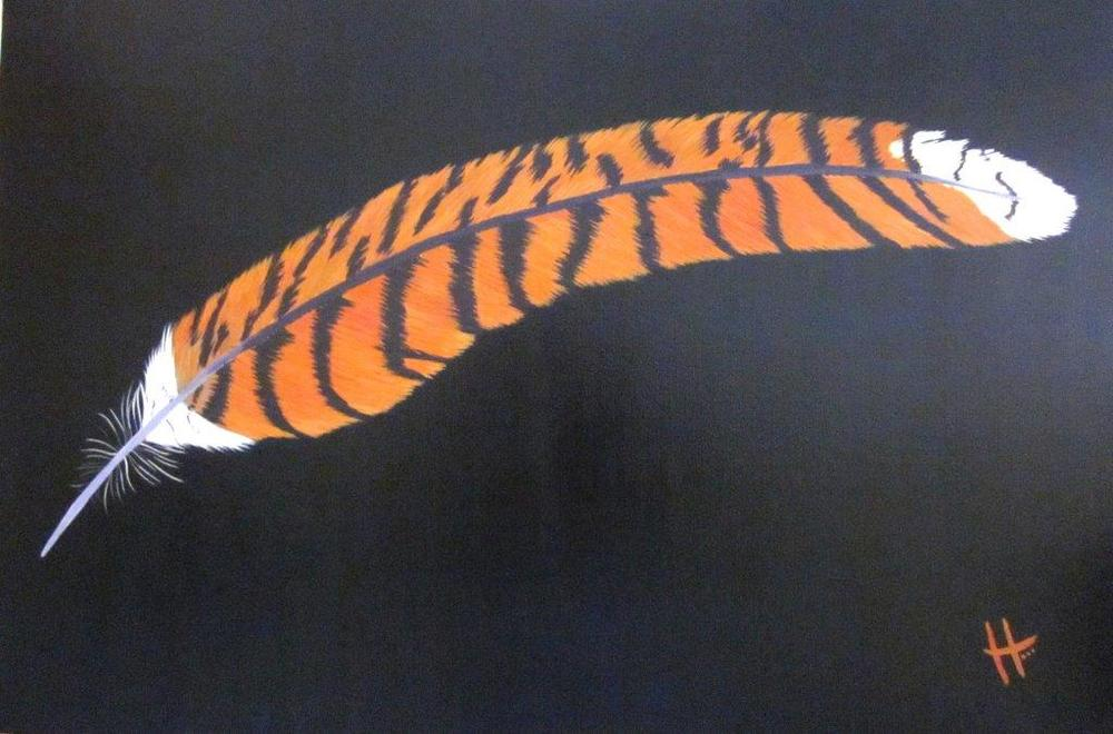kookaburra's feather 004.jpg