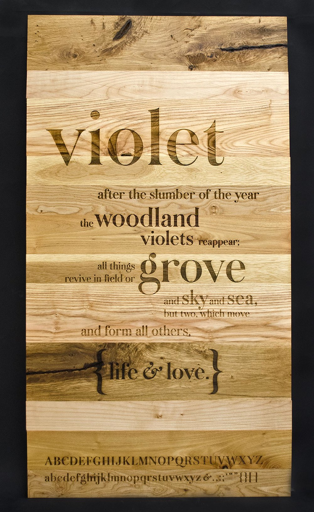 Violet_1.jpg