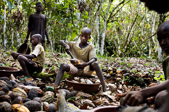 chocolate-child-slavery-ivory-coast.jpg