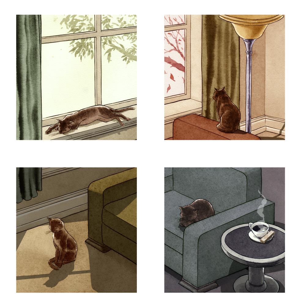Cat Seasons