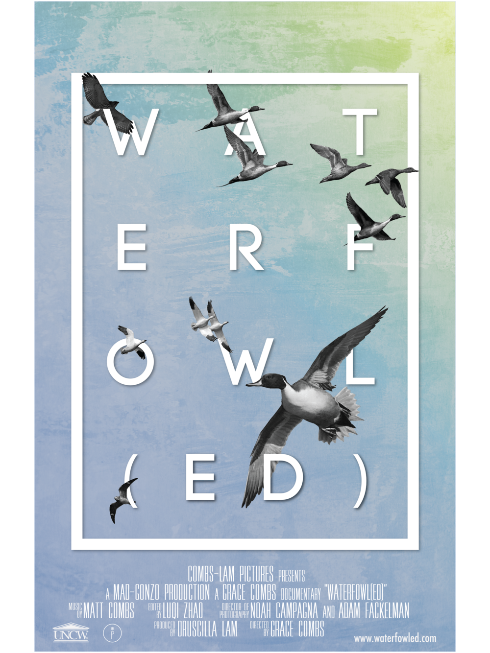 Waterfowled Poster web.png