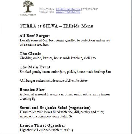 Terra et Silva @ Hillside 2013