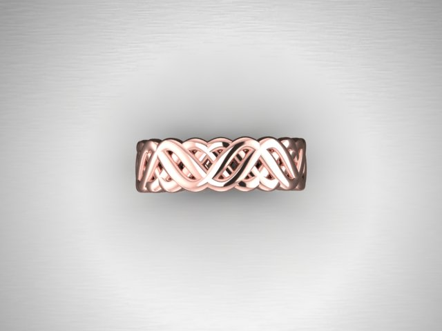 Braided band1.jpg