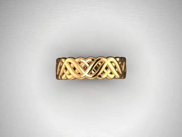 Braided band2.jpg
