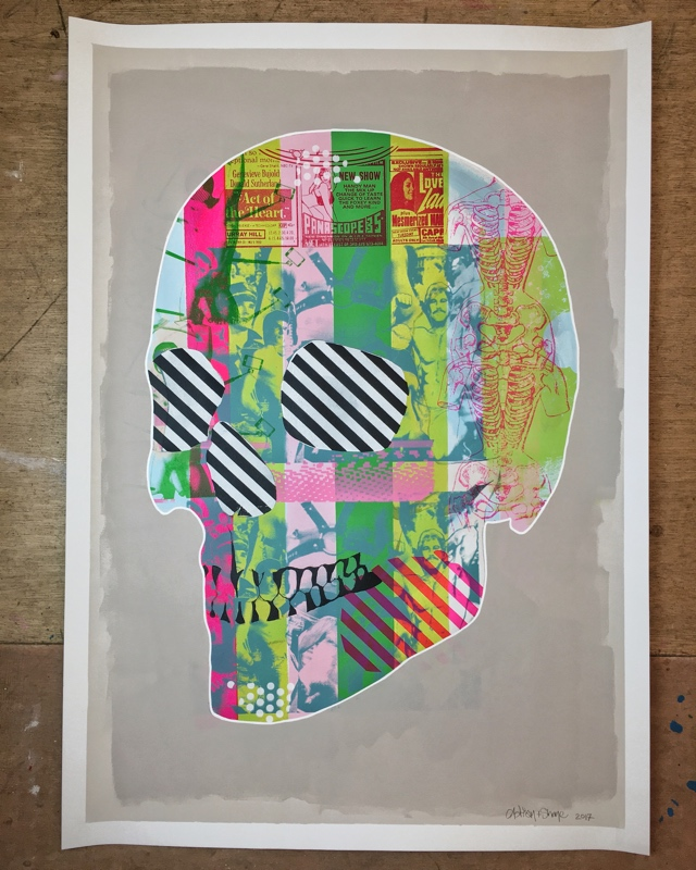 SKULL I  -  (102 x 72 cm)  - Price:  €800  Acrylic and screen print on paper
