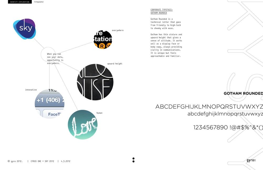 gyro_identity_process4-1.jpg