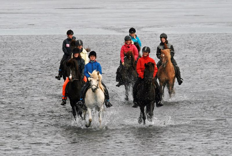 Samreið og góður félagsskapur gleður bæði hesta og knapa