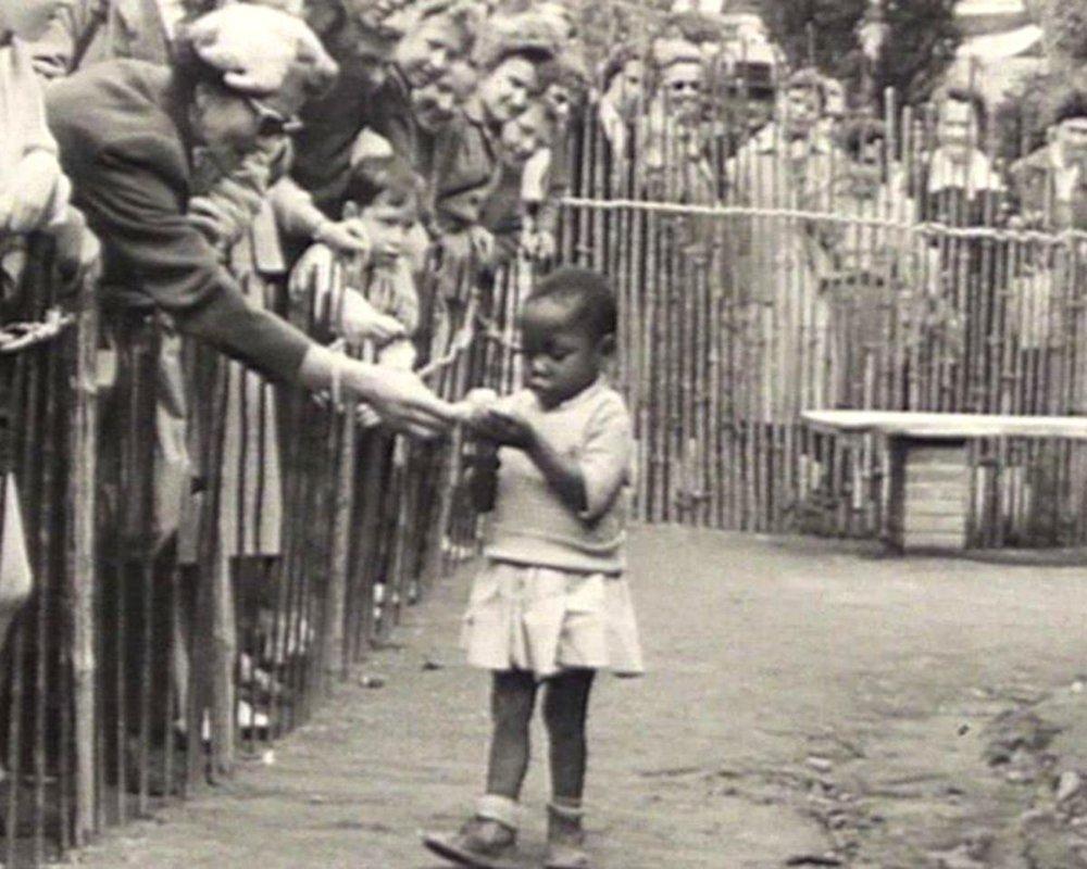 Zoo humano.jpg