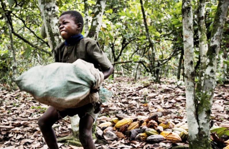 fabricantes-chocolate-financiam-trabalho-escravo-infantil.jpg