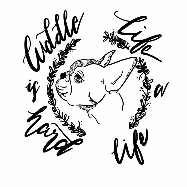 Plane ride doodles on the #iPadpro using #procreate ✍🏻🐶 #doodle #blackwork #caligraphy #lettering #handlettering #frenchie #puppers #cuddle