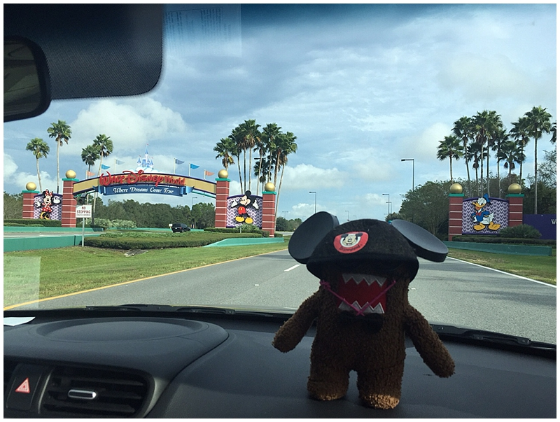 Even Domo couldn't help getting into the Disney spirit!