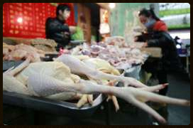 July 29, 2013 New H7N9 Case
