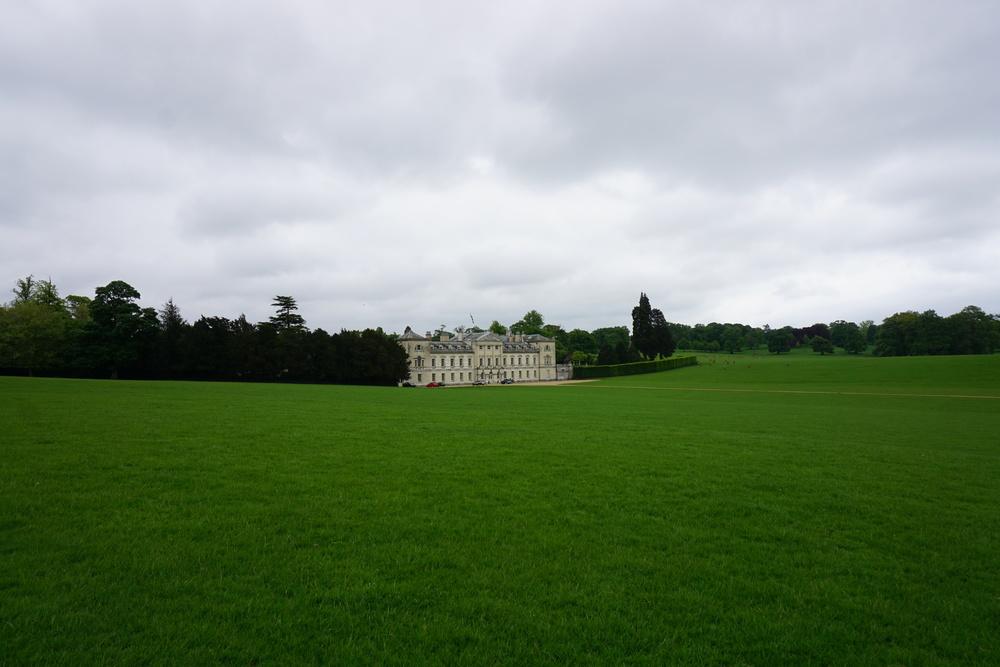 Walking through Deer Park near Wimbledon