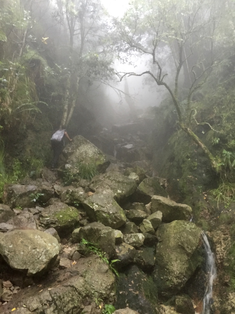 Rock climbing the waterfall