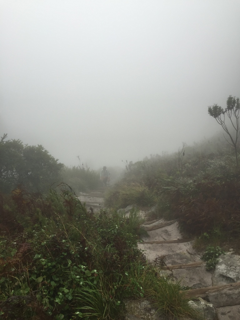 The fog at the summit