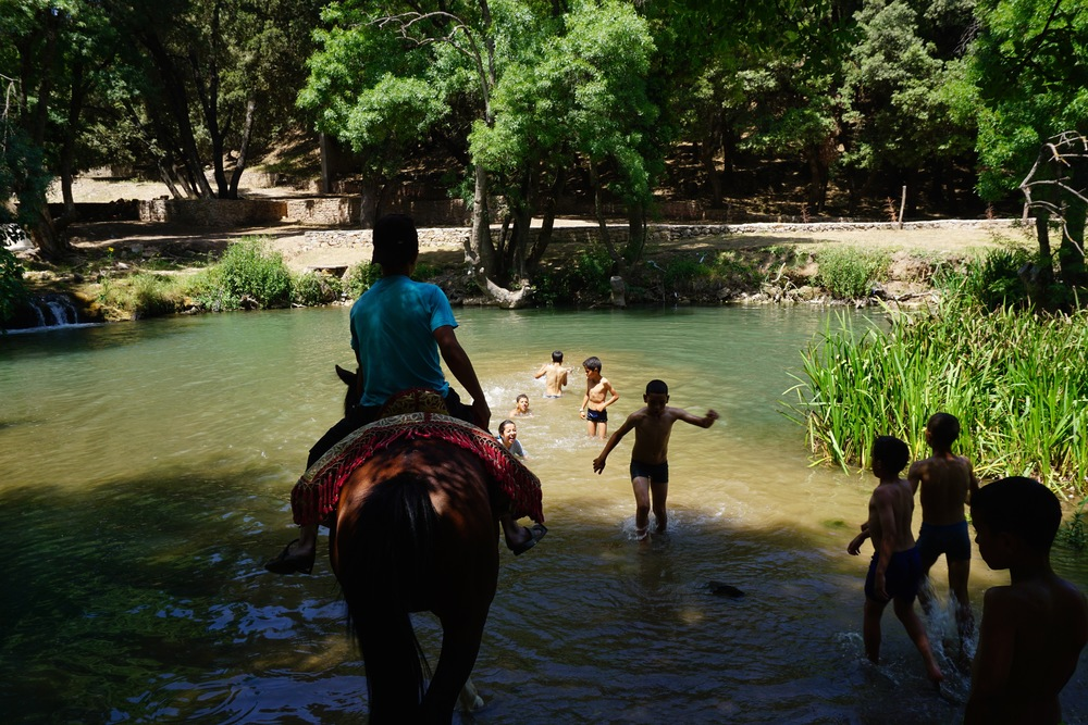 The kids eagerly stripped down to their little underwear and ran into the crisp swimming hole. This time, a young boy with a horse decided to join.  Horses--with beautiful leather saddles--are commonly seen parading around the falls.  They wait around all day for tourists to come and ride through the forest.