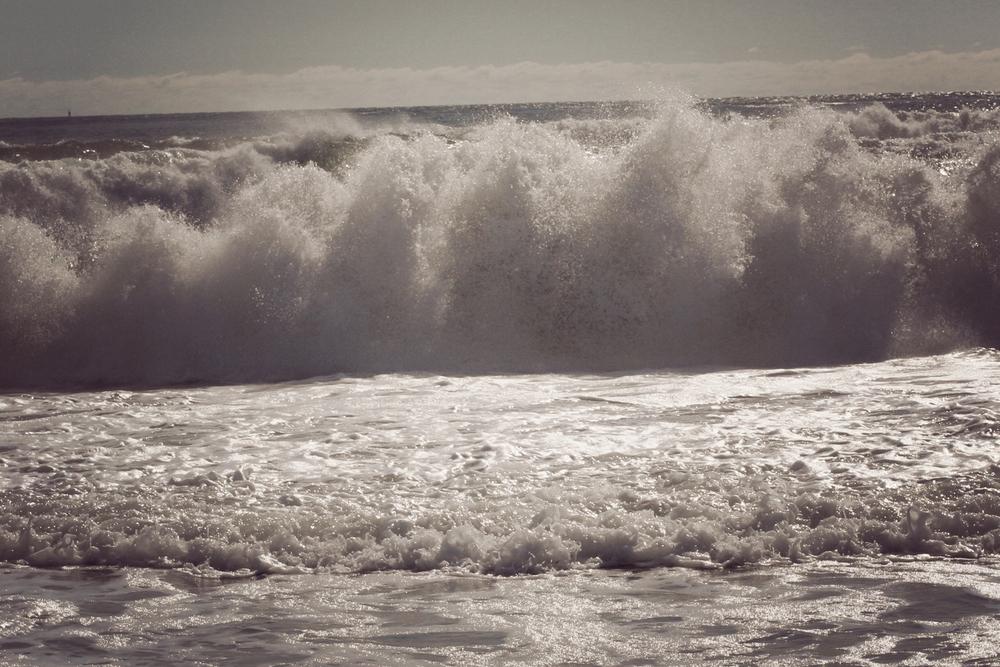 lapush_wave.jpg