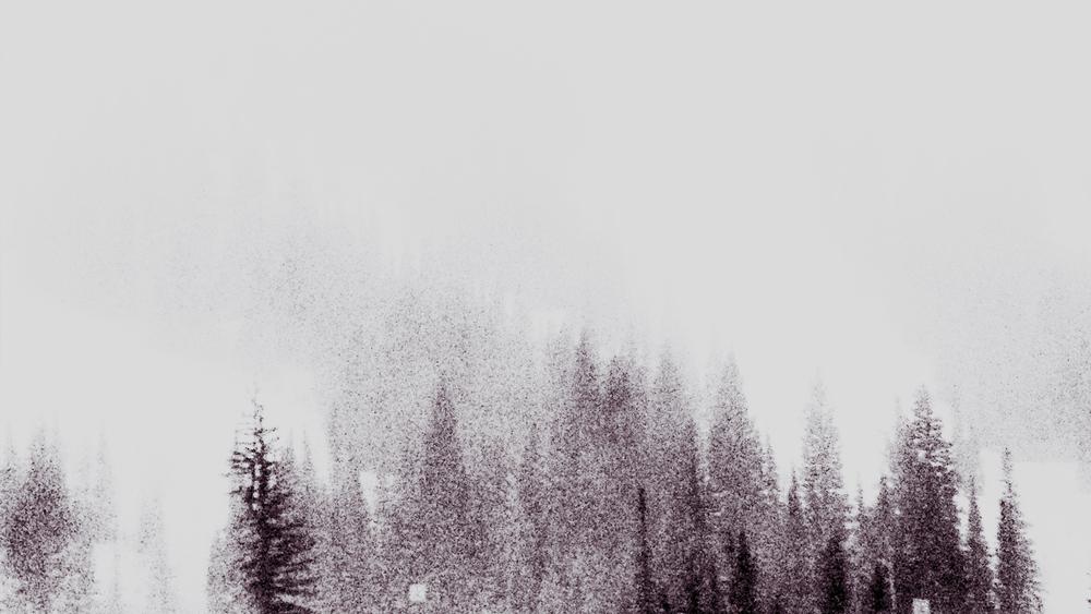 IMG_3990_fix_trees.jpg