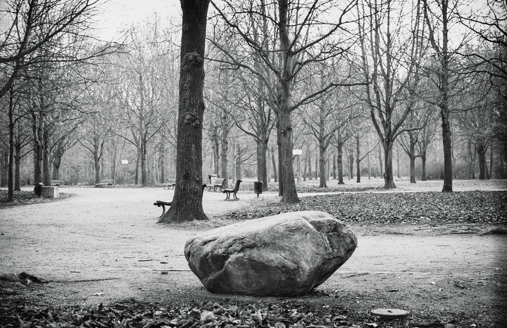 Tiergarten (foto Andreas Valentin, 2014)