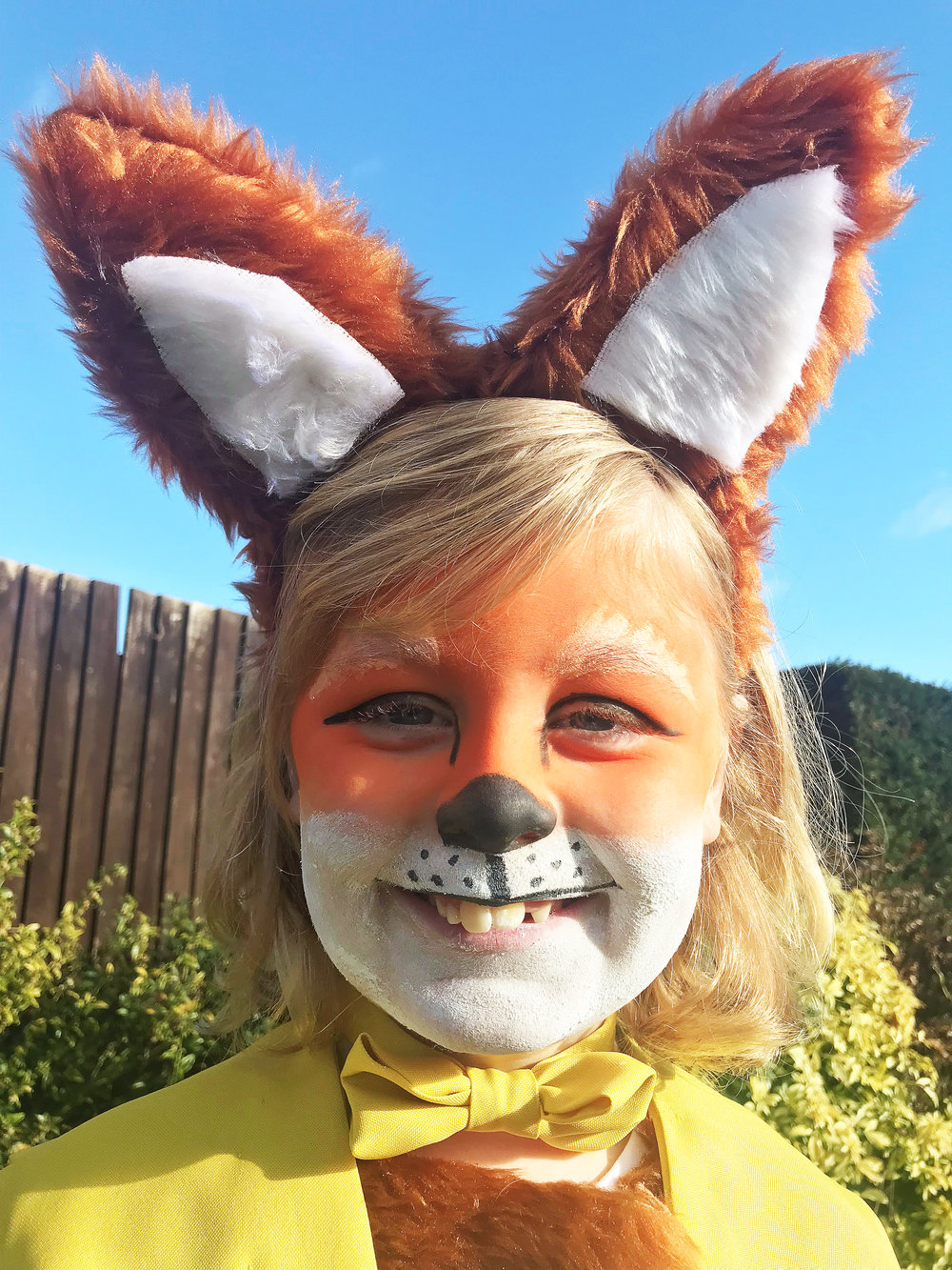 Mummy is very pleased with how the face paint turned out for Jacob's World Book Day Fantastic Mr Fox