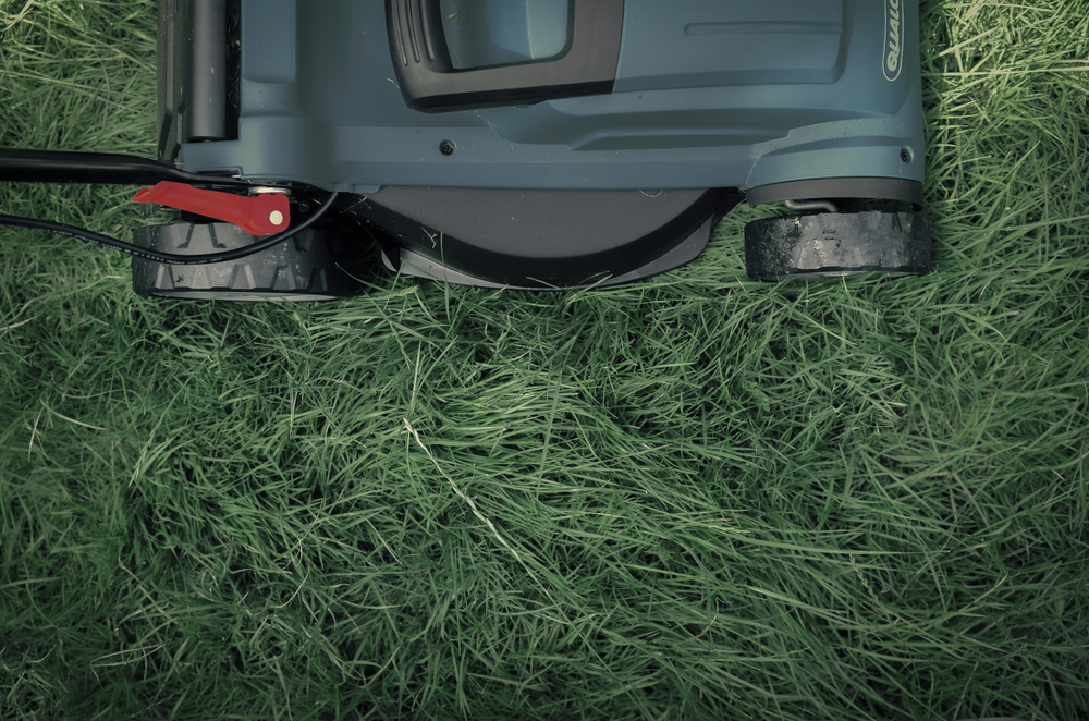 - Grounds Maintenance & Landscape