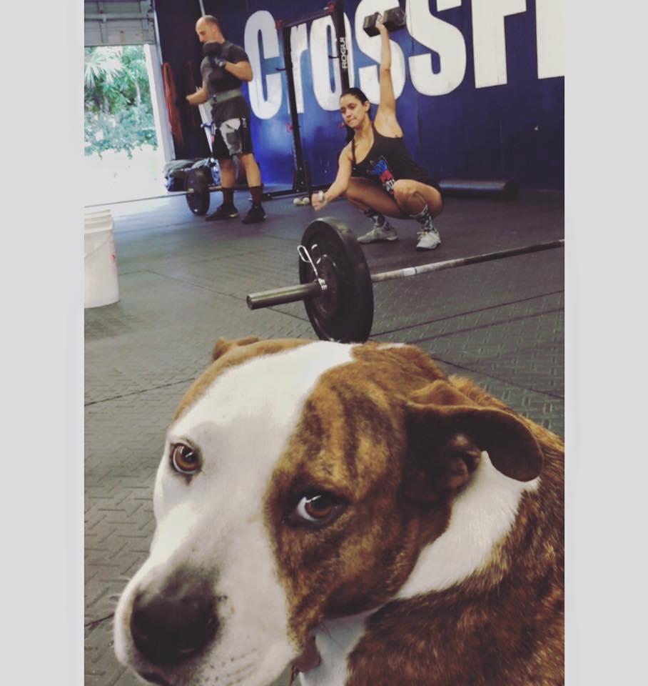 pitbull boca raton gym crossfit hype east mizner park florida beach workouts snatch