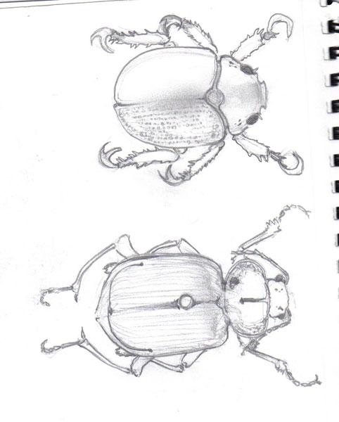 Sketch_033.jpg